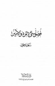 تحميل وقراءة أونلاين كتاب فصول فى الإمرة والأمير pdf مجاناً تأليف سعيد حوى   مكتبة تحميل كتب pdf.